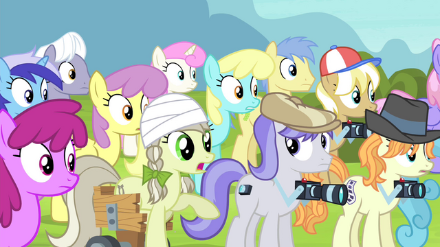 File:Pony but you gave it your stamp of approval S4E20.png