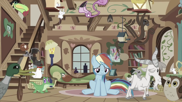 File:Rainbow Dash miserable S03E13.png