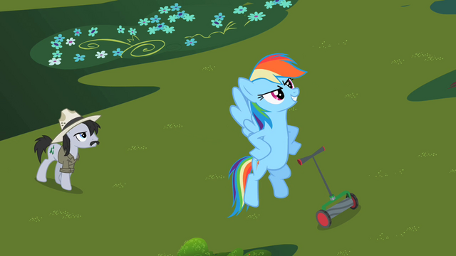 File:Rainbow Dash 'I have just saved that grass' S2E08.png