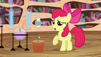 "Apple Bloom ""I hope this works"" S4E15"