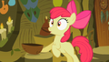 Apple Bloom after drinking the brew S2E06.png