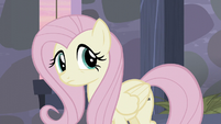 Fluttershy confused S5E02