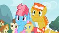 Mr. and Mrs. Cake hoping Fluttershy will foalsit for them S2E13.png