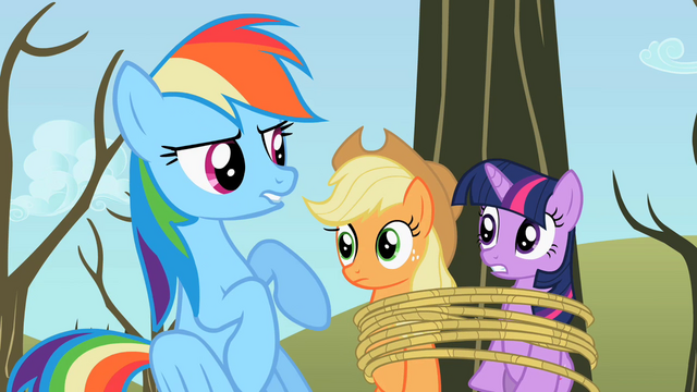 File:Rainbow Dash sounded like S2E10.png