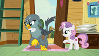 """Gabby """"I know you all tried your very best"""" S6E19"""
