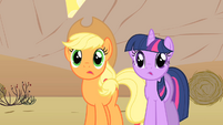 Applejack and Twilight staring at the horse-drawn horse-drawn carriages S1E21