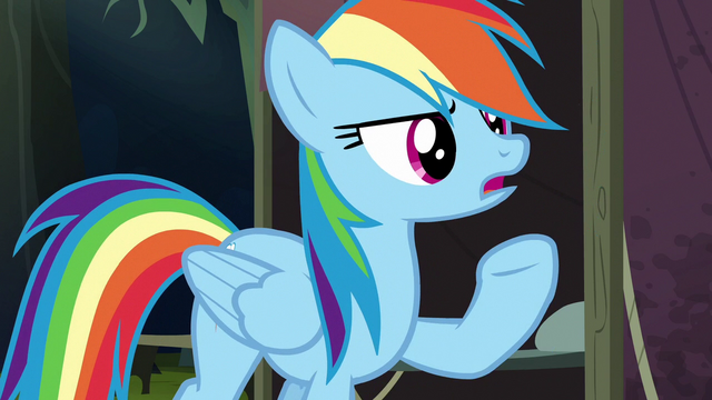 File:Rainbow Dash humoring Quibble's theory S6E13.png