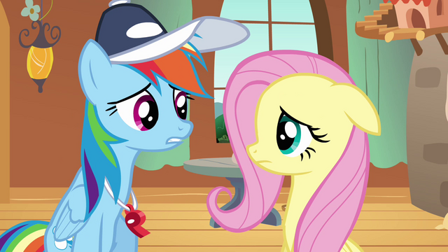 File:Rainbow Dash talking to Fluttershy S2E22.png
