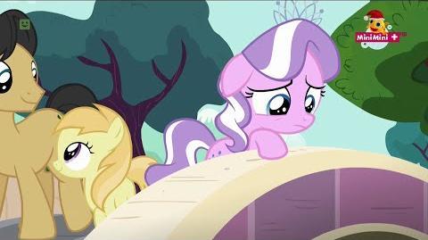 The Pony I Want to Be - Polish