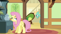 Zephyr Breeze moving Fluttershy's couch S6E11