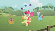Apple Bloom juggling S1E12