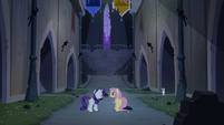 Rarity and Fluttershy in castle S4E03