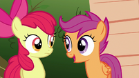 """Scootaloo """"doesn't mean it can't"""" S6E19"""