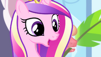 "Cadance ""in the history of the Equestria Games"" S4E24"