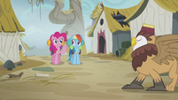 Pinkie trying to get the attention of a griffon S5E8