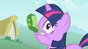 Frog on Twilight's face S1E15.png