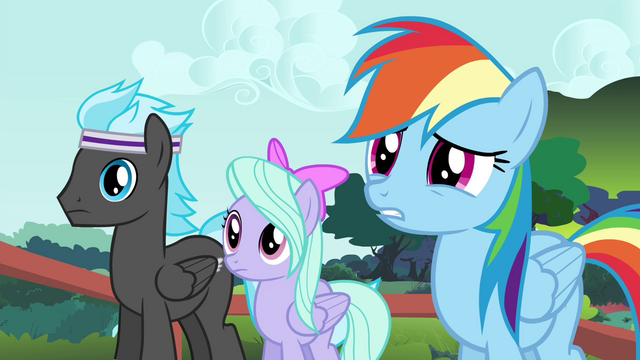 File:Rainbow Dash and Pegasi confused S4E16.png