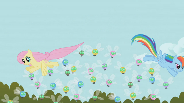File:Fluttershy and Rainbow Dash herding Parasprites from above S01E10.png