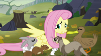 "Fluttershy ""and you're freezing!"" S5E23"