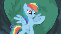 Rainbow Dash well how else S1E14