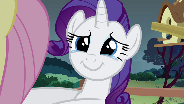File:Rarity crying in joy S2E19.png