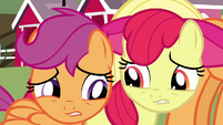 Apple Bloom and Scootaloo S3E04