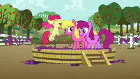 Apple Bloom jumping excitedly S6E4