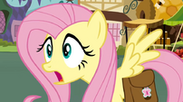 Fluttershy shocked2 S02E19