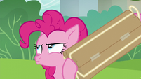 Pinkie Pie shaking her present S6E3