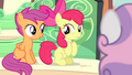 Apple Bloom and Scootaloo excited S4E19.png