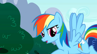 "Rainbow Dash ""What have we learned"" S01E16"