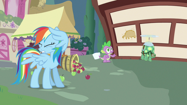 File:Rainbow Dash can't look S3E11.png