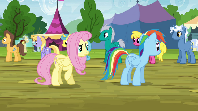 File:Fluttershy and RD looking for Stellar Eclipse S4E22.png