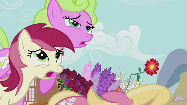 File:The Flower ponies faint again S5E9.png