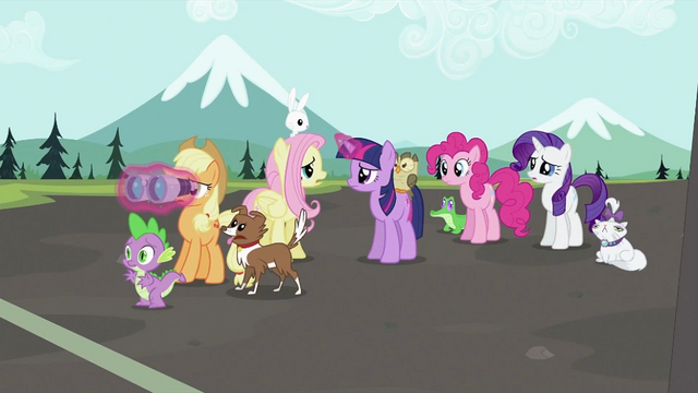 File:Rainbow Dash's friends worried S2E07.png