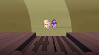 Fluttershy introduces herself to the McColts S5E23