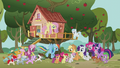 Ponies gather in front of the clubhouse S5E18.png