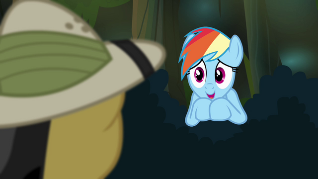 "File:Rainbow Dash ""a huge fan"" S4E04.png"