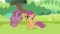 "Scootaloo ""I'd love to"" S2E03"