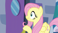 Fluttershy hears a loud crash S6E11