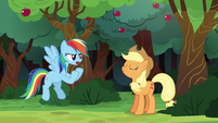 "Rainbow Dash ""I could beat the whole town"" S6E18"