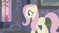 Fluttershy asking the bird for help S5E02