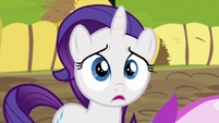 Filly Rarity in distressed shock S6E14