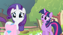 Twilight 'Why not, Fluttershy' S4E14