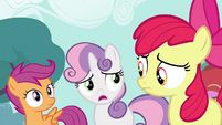 "Sweetie ""All these ponies really wanna meet"" S4E15"
