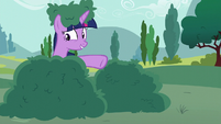 Twilight pointing at bush next to her S6E6