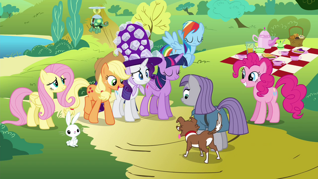 File:Applejack introduces Winona to Maud S4E18.png