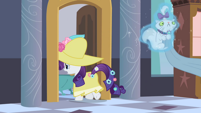 File:Rarity levitating Opalescence to bathroom S2E09.png
