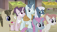 Sugar Belle, Party Favor, and Night Glider nervous expressions S5E02