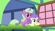 Window ponies 3 S2E18